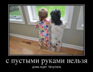 712165_s-pustyimi-rukami-nelzya_demotivators_to